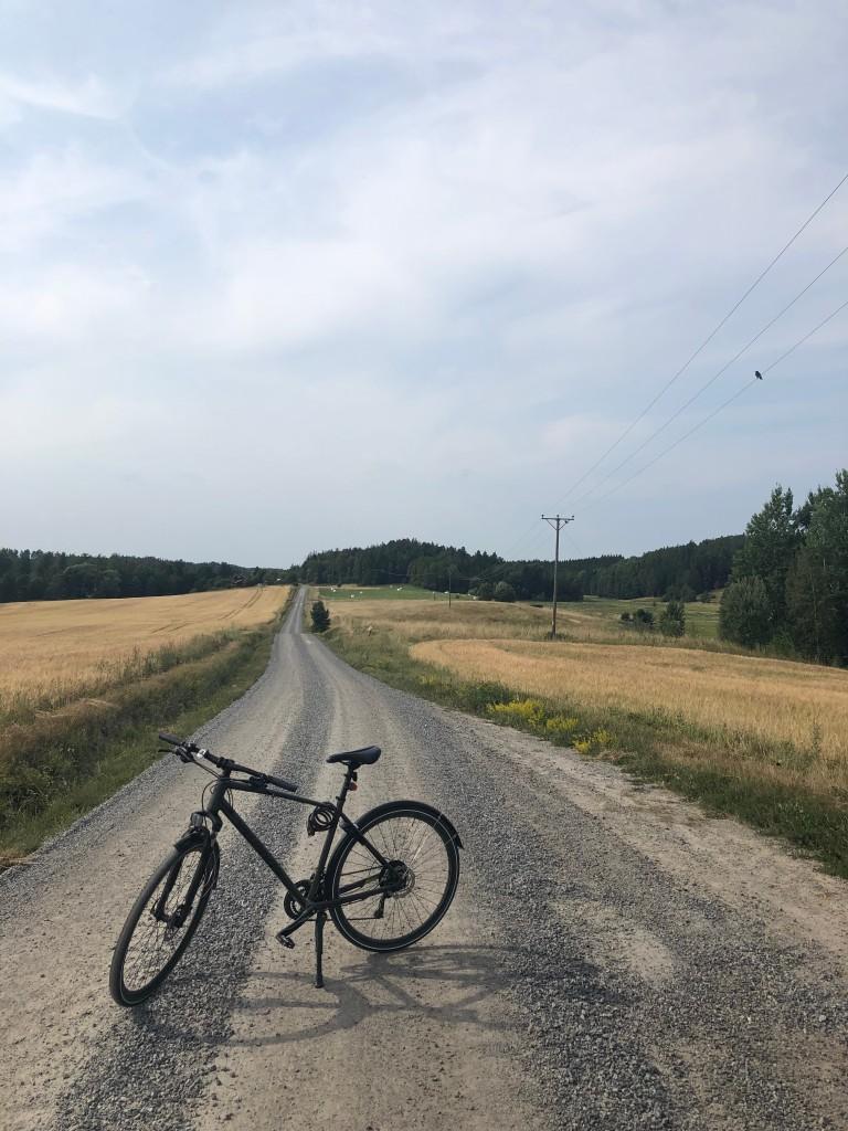 Cykeln på grusvägen mellan Malmköping och Fräkentorp. Åkrar på vardera sida vägen och elledning till höger med en fågel på ena linan.